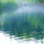 ペパーミントの風を感じる時♪ 【夏の信州・女神湖】