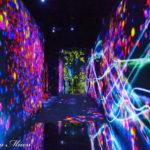 チームラボ・ボーダレスは、新しい感覚の体験型ミュージアム。