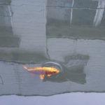 鯉が民家の間を泳ぐ、しっとりとした蔵の町で。【栃木市】
