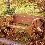 「秋の歌」が聴こえる♪♪【信州:蓼科・女神湖の紅葉】