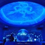 湘南の海を望む貴重な海洋施設【新江ノ島水族館(えのすい)】