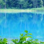 水面のターキッシュ・ブルー、その魔法の色【裏磐梯・五色沼】
