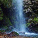 日本的情緒に触れる、深遠なる世界の中で【越生・黒山三滝】