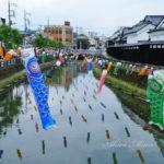 「うずまの鯉のぼり」、その圧倒的な数に驚きを!【栃木市】
