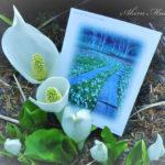 遥かな尾瀬へ、白い妖精のような水芭蕉の咲く頃に。
